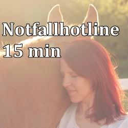 Pferdesorgen Hotline 15min