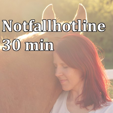 Pferdesorgen Hotline 30min
